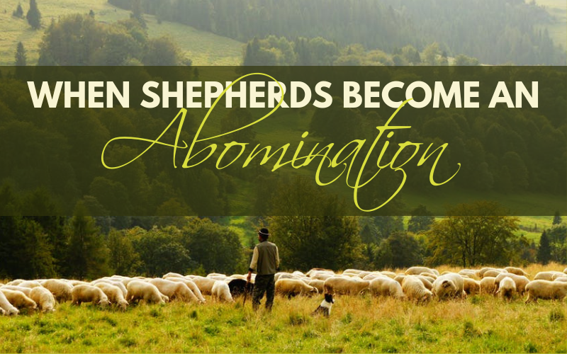 When Shepherds Become an Abomination